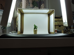 lightbox10